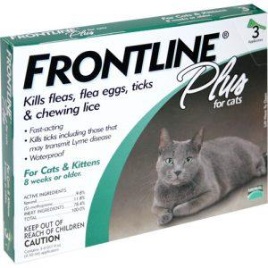 פרונטליין פלוס חתול