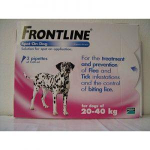 פרונטליין 20-40 קילו