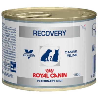 רויאל קנין ריקוברי - שימורי מזון רפואי לכלבים